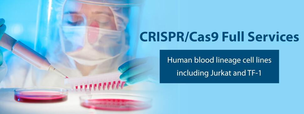 CRISPR Service