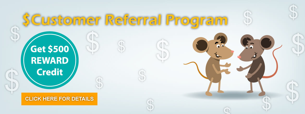$500 Referral Program