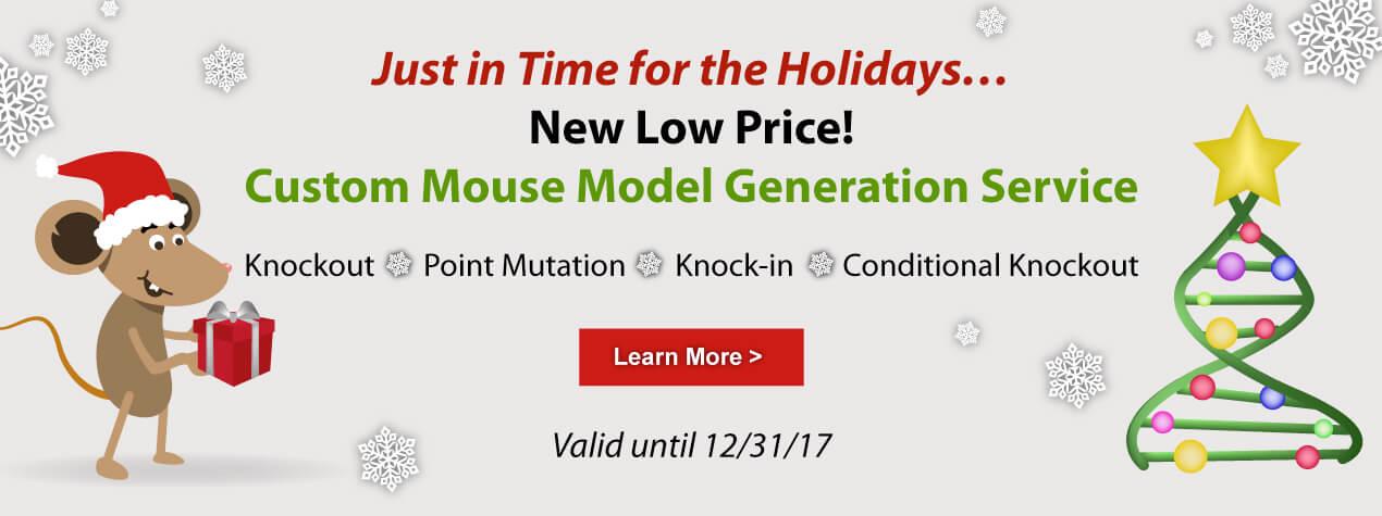 Custom Mouse Model Generation Service