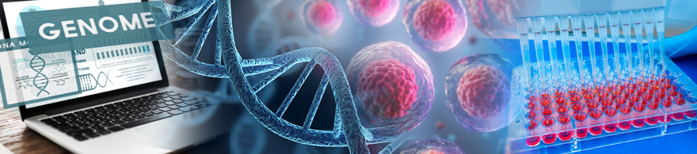 Stem Cell Genome Editing