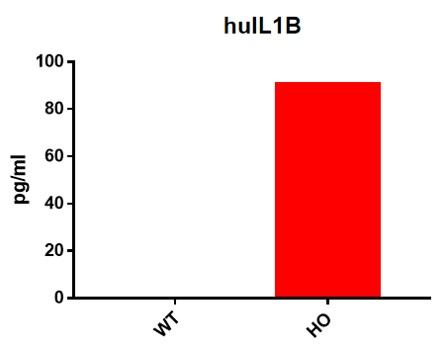 Landingpage-ASHU-190047-IL1B-HU-ICPMouse-1