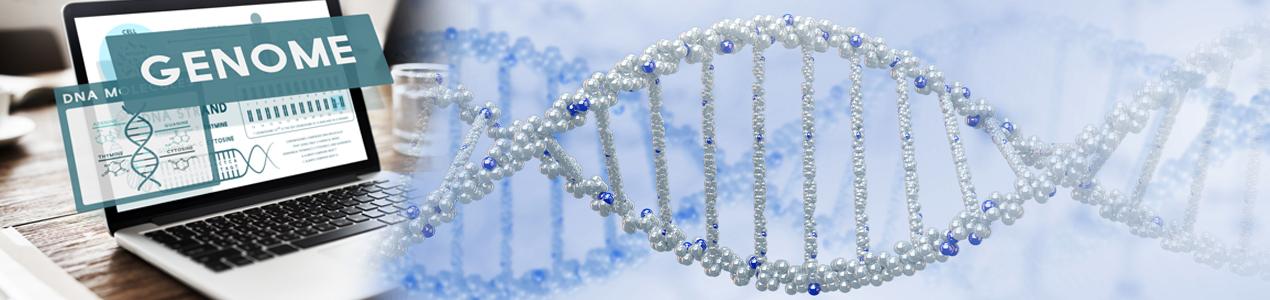 CRISPR Genome Editing