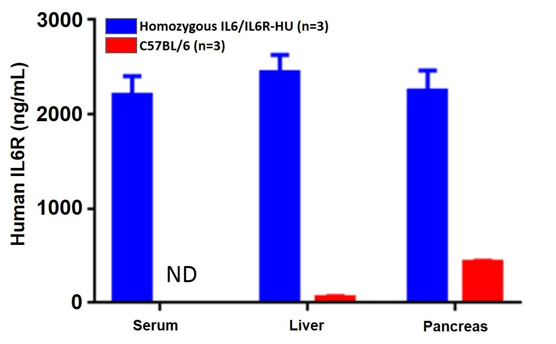 appnote-animalmodel-mouserepository-cytokine-3