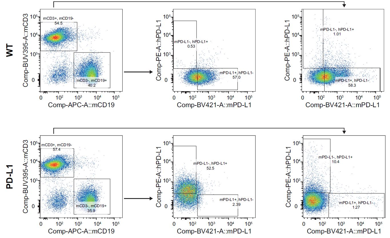 appnote-animalmodel-mouserepository-humanicp-pd-l1-2