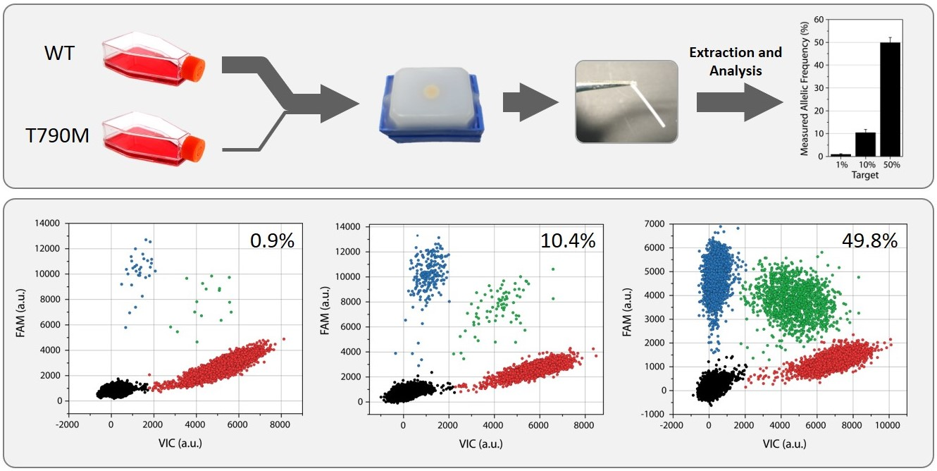 Custom FFPE Processing of Your Cell Lines - Formalin Fixed Paraffin Embedded