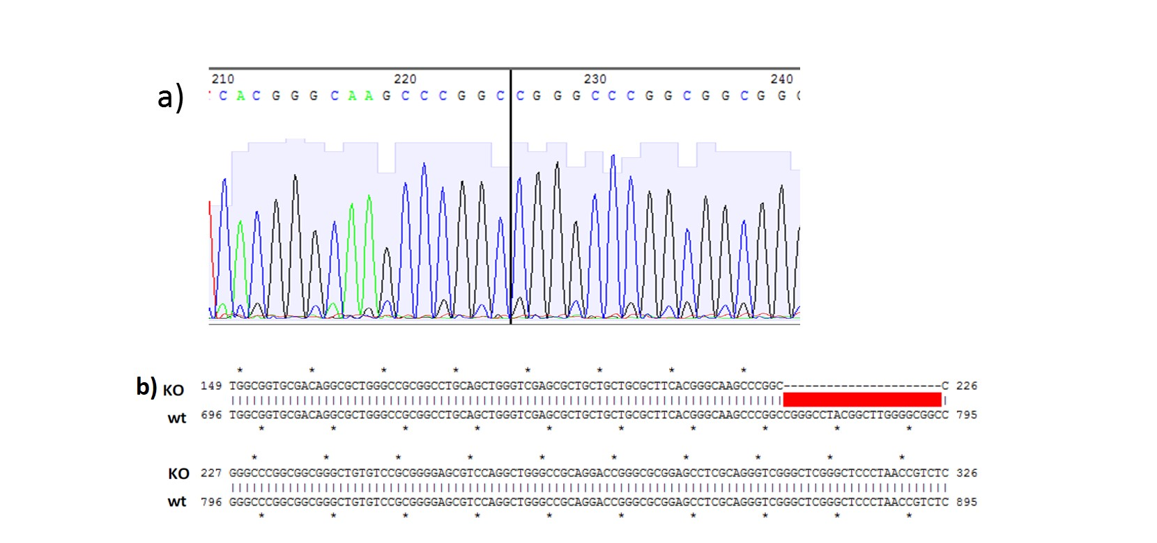 casestudy-service-stemcell-genomeediting-3b