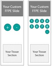Custom FFPE Slides