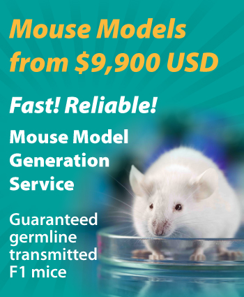 Applied StemCell Mouse Models