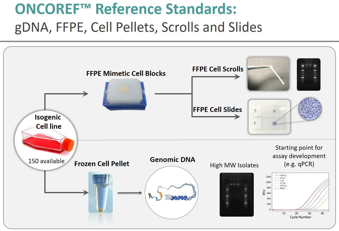 Oncoref reference standards product overview