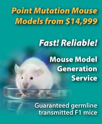 point mutation mouse models