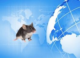 TARGATT™ Knock-in Mouse Models